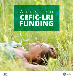 Mini guide to LRI funding